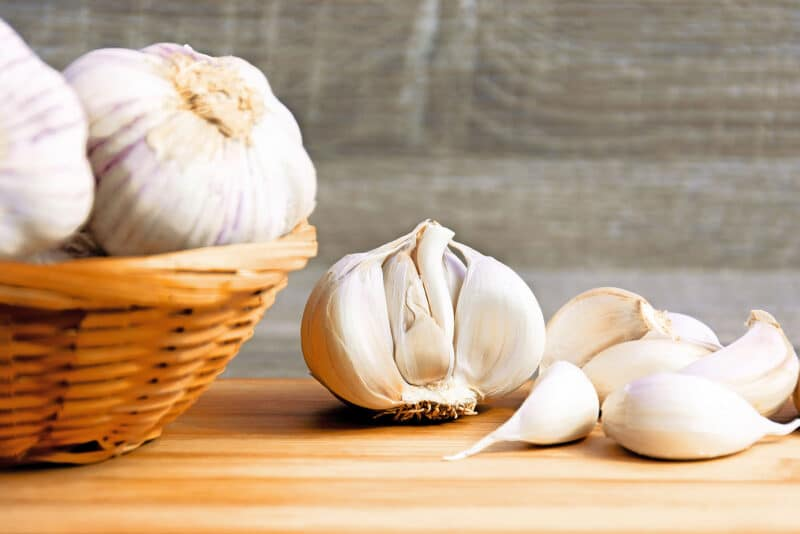 April is Garlic Month!